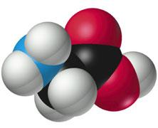 Casein Protein Chemistry