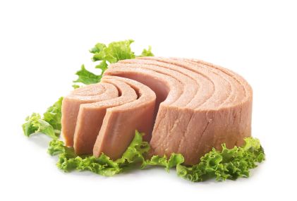 High Protein Snack Tuna